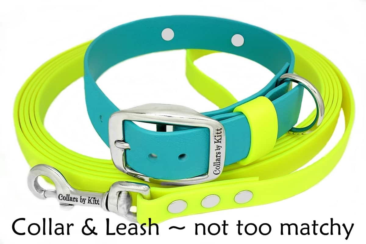Matching Collar & Leash