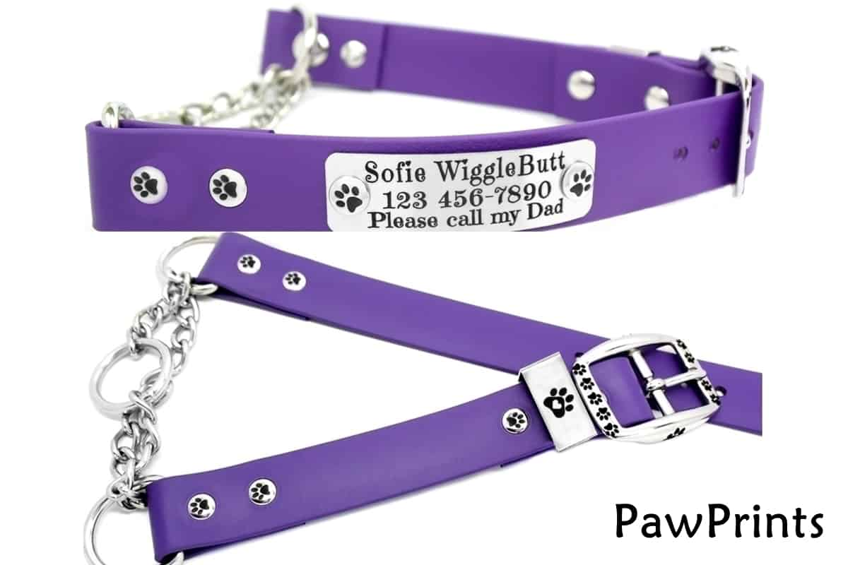 Biothane Martingale Dog Collar paws